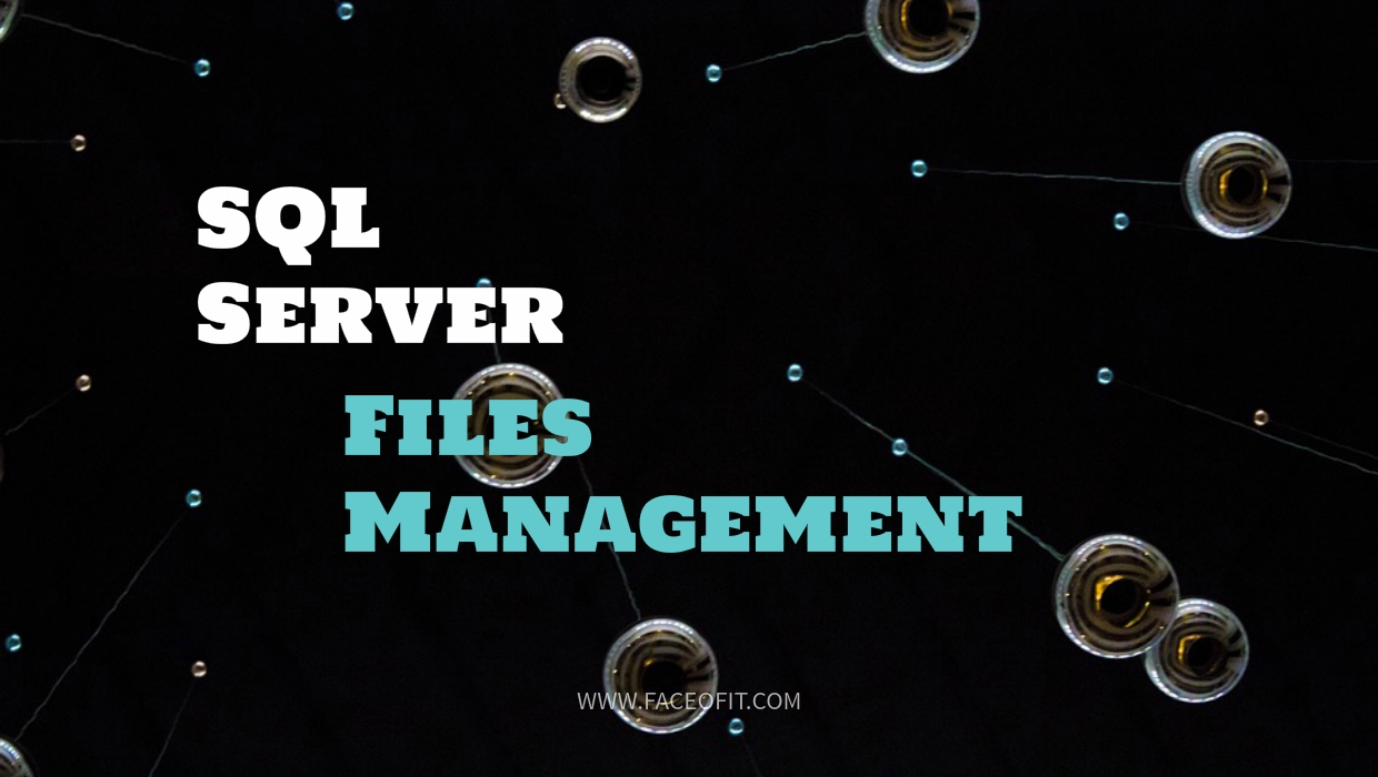 Manage your SQL Server Log and Database File Size Growth